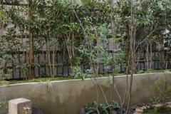 立水栓のある庭