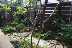 経年劣化の庭